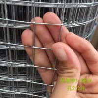 陕西电焊网 建筑外墙抹灰钢丝网 墙体防裂挂网价格 常年现货供