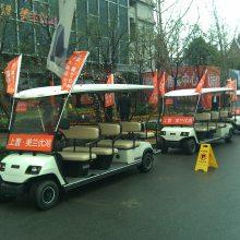 上海电动观光车租赁,电动看房车租赁,电动游览车出租