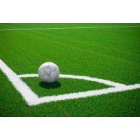 北京人造草坪价格足球场专用草坪加密假草坪价格