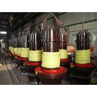 津奥特输送雨水用的轴流潜水泵-排除轻度污水的潜水轴流泵-转速730的大型排污泵