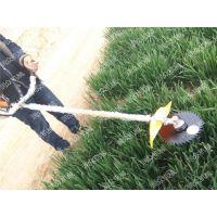 转盘式坚固割草机 实用型农用割草机 润众