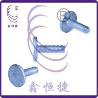 供应非标塑胶螺钉 福建塑料行业紧固件 鑫恒捷品牌不锈钢非标螺丝