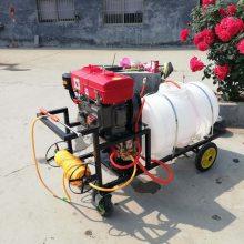 宏兴牌手推式喷雾器手推式高压杀虫喷雾机 园林绿化专用打药机