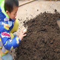 河北蚯蚓粪厂家 鸡粪 蚯蚓粪肥 绿色食品专用 水产专用鱼肥