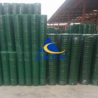 浩洲供应浸塑电焊网|拦鸡栏鸭荷兰网|绿色波浪养殖网|圈地铁丝围栏网