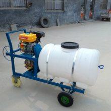 农用植保机械 汽油打药喷雾器 手推式园林高压打药机