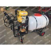 移动式园林农田喷雾器 汽油林业喷雾器价格 润众