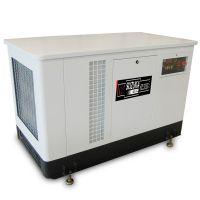 30KW天燃气/汽油发电机组