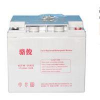 骆俊12V38AH 铅酸免维护蓄电池 6GFM-38 UPS不间断电源蓄电池