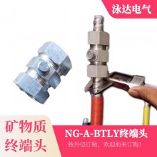 BTLY矿物质电缆头 BTLY电缆附件4x10mm2 深圳出厂
