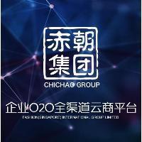 深圳O2O分销系统搭建项目运营