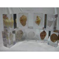 透明树脂镇纸 亚克力镇纸 水晶胶内埋贝壳工艺礼品 商务礼品
