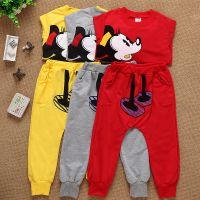 哪里有今年秋季纯棉儿童套装批发新款童装服装批发市场质量保证