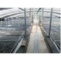 儒风土工(图)|HDPE土工膜批发|HDPE土工膜