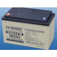 鸿宝hossoni蓄电池12V120AH