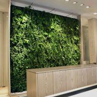 垂直绿化植物墙国外技术支持送您一个自的家