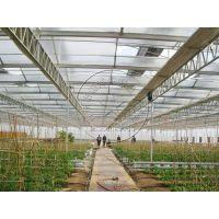 青州瀚洋玻璃/阳光板生态大棚承建—餐厅温室,展厅温室等