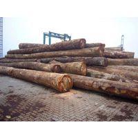 供应广州黄埔码头进口绿檀木需要办理濒危证明吗|怎么办理 020-36686032 谢小姐