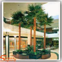 仿真蒲葵树厂家 人造圆叶蒲葵树盆栽植物 仿真棕榈树工程