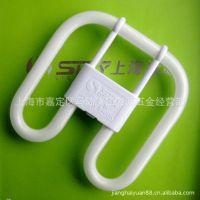 实价批发上海绿源 2D荧光灯管21W 三基色电子节能灯批发