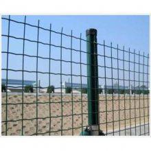白城铁丝养殖绿色围网、优盾牌荷兰网