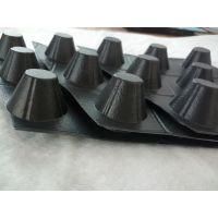 2cm塑料排水板 华龙HDPE排水板生产厂家