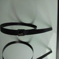 厂家直销自锁不锈钢扎带,钢珠止退不锈钢扎、珠海捆扎电力标牌扎带