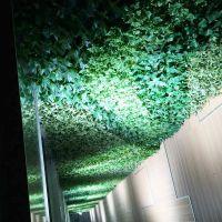 梦幻城堡壁挂仿真藤条塑料绿植墙仿真垂柳树枝条装饰背景墙体挂饰植物盆栽