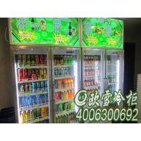 西丽便利店用的饮料展示柜做外机多少钱一台