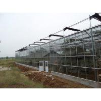 山东温室的智能设计方案和聚酯阳光板、热镀锌骨架