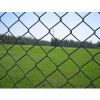 攀枝花卓通加工定做绿色包塑铁丝体育场围栏,产品包您满意!13982359302