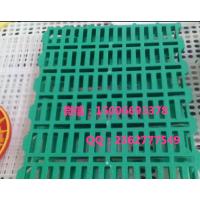 供应耐用羊漏粪板 塑料加固型羊床厂家 羊用漏粪地板50x70