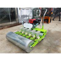 上海青精密蔬菜播种机 下种量精准蔬菜播种机