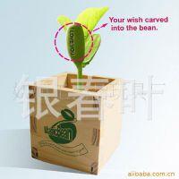 供应木盒爱情魔豆 新奇特植物 迷你植物 创意盆栽 魔豆 厂家批发