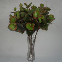 工厂直销 单支手感海棠叶 2色选 高仿真植物墙 绿色插花装饰叶子