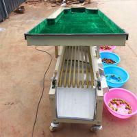 供应水果筛选机 沙棘、金桔、沙糖桔、荔枝、龙眼等小型果蔬果实高效率选果机