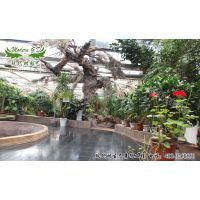 长春立体绿化,生态景观,室内景观,生态酒店,生态农业