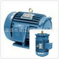 直销高崎 可定制特殊电机高效率低压马达 量大优惠