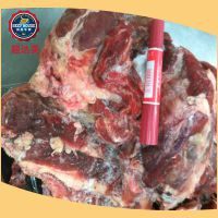 进口牛肉批发商供应 进口生鲜牛碎肉 冷鲜冻牛肉碎 牛肉碎 牛碎肉
