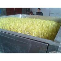 豆芽机,科发豆制品设备(已认证),新型豆芽机