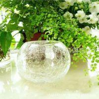 透明玻璃花瓶 水培花瓶 圆口碎花碎冰鱼缸 水晶玻璃圆形玻璃杯