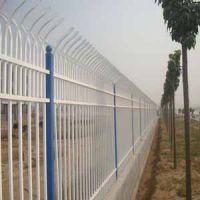 供青海围栏网和西宁铁艺围栏网哪家好