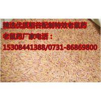 供应溴鼠灵毒饵0.005%老鼠药,配制好的稻谷老鼠药批发,老鼠药厂价直销