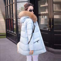 平湖2015新款韩版时尚貉子毛领羽绒服女款中长款羽绒服厂家直销