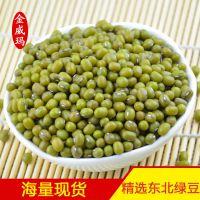 厂家直供【绿豆】 特价促销东北绿豆 洮南绿豆 产地绿豆批发 金威玛