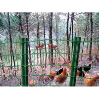 随州养殖护栏网,龙泰百川栅栏,养殖护栏网厂