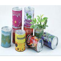 草娃娃马口铁罐易拉罐花卉,魔豆办公室种植,迷你植物 专利产品