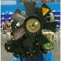 绵阳 4Y电喷汽油机 宝发 大连4Y电喷汽油机