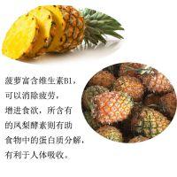 粤旺菠萝浆 专业果浆生产厂商 香蕉浆,木瓜浆 凤梨汁 非浓缩果浆