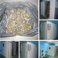 开平干燥机,江门福瑞斯永淦,香菇干燥机